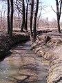 Долина р. Раменки вдоль Мичуринского пр-та.jpg
