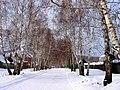 Дорога к Сопке - panoramio.jpg