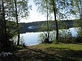 ЗЕЛЕНОГОРСК - Ефрейторское озеро - ТЬМА и СВЕТ (17).JPG