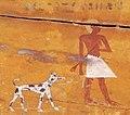 Зображення плямистої собаки в Стародавньому Єгипті.jpg