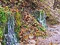 Изборск. Словенские ключи 2. Springs 2. - panoramio.jpg