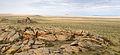 Камни и пески Тывы.jpg