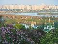 Київ Національний ботанічний сад ім. М. Гришка квітень 2018 04.jpg