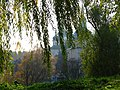 Контури Свято-Іонинського монастиря у Ботанічному саду.jpg
