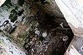 Лезгор, Осетия, Человеческие кости и черепа, Некрополь.jpg