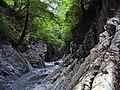 Мамедово ущелье Сочинский национальный парк - panoramio (2).jpg