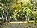 Міський сад, осінь-1.JPG