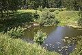 Озеро (2013.06) - panoramio (2).jpg