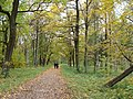 Осень в Дворцовом парке Гатчины - panoramio.jpg