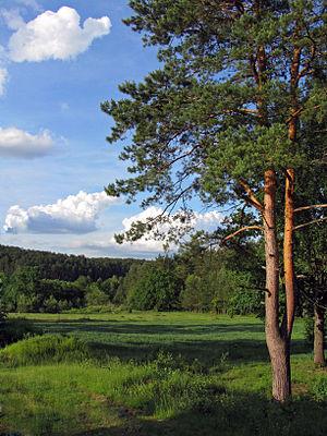 Пейзаж біля палацу.jpg