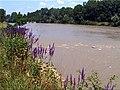 Река Белая. Фотография Виктора Белоусова. - panoramio - Victor Belousov.jpg