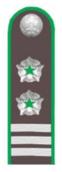 Советник гос.гражданской службы РФ 2 класса (Россельхознадзор).png