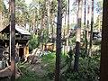 Тимирязево (Томская область) 005.jpg