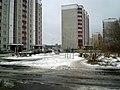У двары дома №30 па вул. Рабінавай - panoramio.jpg