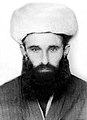 Шейх-уль-ислам Абдулкадир Яздани(Алиев).jpg