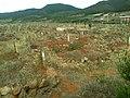 مقبرة المنطقة العائمة في وسط البحر - panoramio.jpg