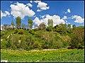 مناظری از اطراف روستای کرده ده - panoramio (8).jpg
