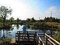 ひょうたん池 - panoramio.jpg