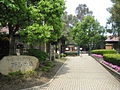 キャンベルタウン野鳥の森 - panoramio.jpg