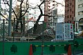 公園 - panoramio (2).jpg