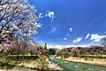 大出の吊橋 - panoramio (4).jpg