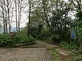 岸上九曲慢游道 - Nine Bends on tha Land Trail - 2015.11 - panoramio.jpg