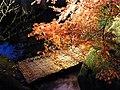 徳川園 ライトアップ - panoramio.jpg