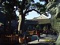 普陀山庙里的石狮子 - panoramio.jpg