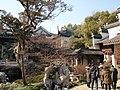 盆景博物馆景色 - panoramio - 江上清风1961 (10).jpg