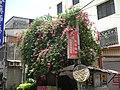花 - panoramio (3).jpg