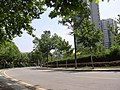 街景 - panoramio (5).jpg