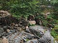 醉心园 - Zuixin Geological Spectacle Area - 2012.06 - panoramio.jpg