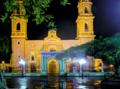 06051 Catedral de la Inmaculada Concepción 3.png