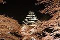 1 Ōtemachi, Aizuwakamatsu-shi, Fukushima-ken 965-0873, Japan - panoramio (18).jpg