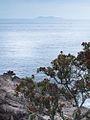 1 mount maunganui sea island.jpg