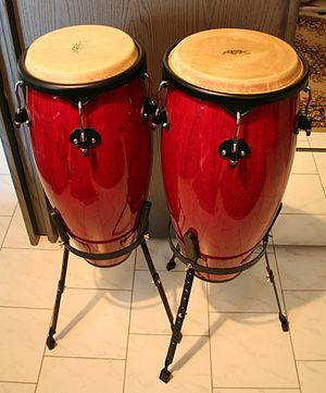 Salsa music - Conga drums, one of the foundational instruments of salsa music.