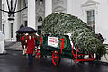 2008 Blue Room Christmas tree - received by Laura Bush.jpg