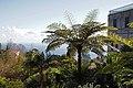 2011-03-05 03-13 Madeira 213 Monte, Jardim tropical Monte Palace (5545099784).jpg