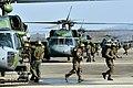2012. 12 적진 깊숙이 침투하라! '공중강습작전(Air Assault)' (10) (8248426689).jpg