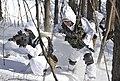 2013.2.7 한미 해병대 설한지훈련 Rep.of Korea & U.S Marine Corps Combined Exercises (8468048810).jpg