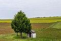 20150523 Naturpark Saar-Hunsrück Zerf Heltern Kapelle mit Baum IMG 4540 by sebaso.jpg