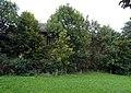 20150924420DR Dittersdorf zu Amtsberg Rittergut.jpg