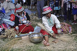 2015 Smithsonian folklife festival DC -Qeswachaka Bridge rope making - 01.jpg