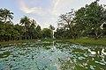 2016 Rangun, Jezioro Kandawgyi (11).jpg