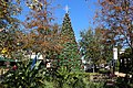2017 Christmas tree, St. Johns Town Center.jpg