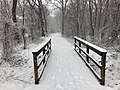 2018-03-21 08 44 19 View along a snow-covered walking path as it crosses a bridge in the Franklin Farm section of Oak Hill, Fairfax County, Virginia.jpg