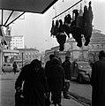 24.12.1963. place Dupuy les volatiles. (1963) - 53Fi3164.jpg
