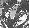 25 שנה לדגניה ב, החבר הרלינג מקנדה במטע הבננות-ZKlugerPhotos-00132q0-090717068513844b.jpg