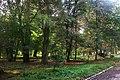 26-256-5001 Тлумацький парк.jpg