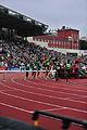 3000 m hurdles, Bislett Games 2011.jpg